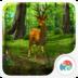 3D晨光森林-梦象动态壁纸